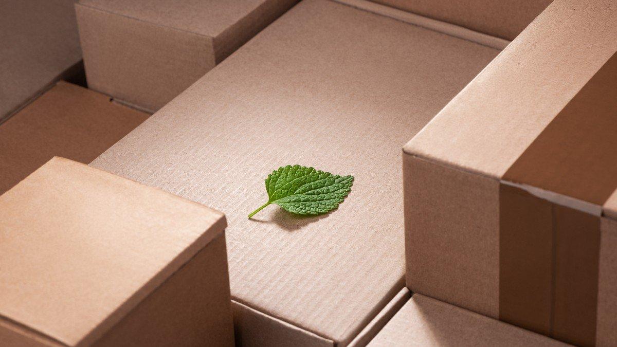 Mielikuva ekologisuus pakkaamisessa